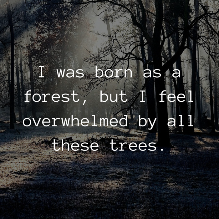 tree forest introvert quote