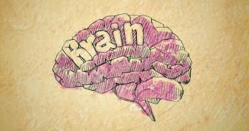 brain concept sketch