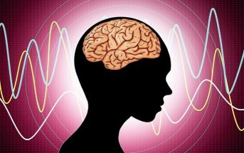 illustration of brain and brainwaves