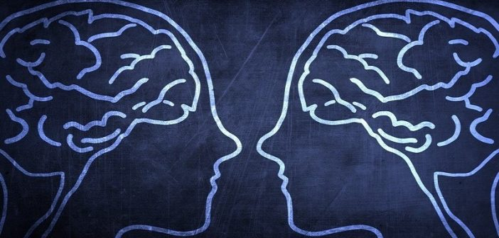 two heads and brains - concept of judging vs perceiving