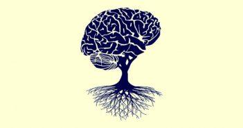 train shaped like brain to signify a growth mindset