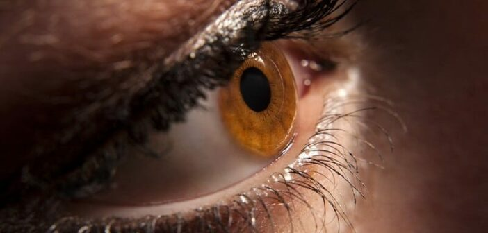 a dilated pupil indicating attraction of love